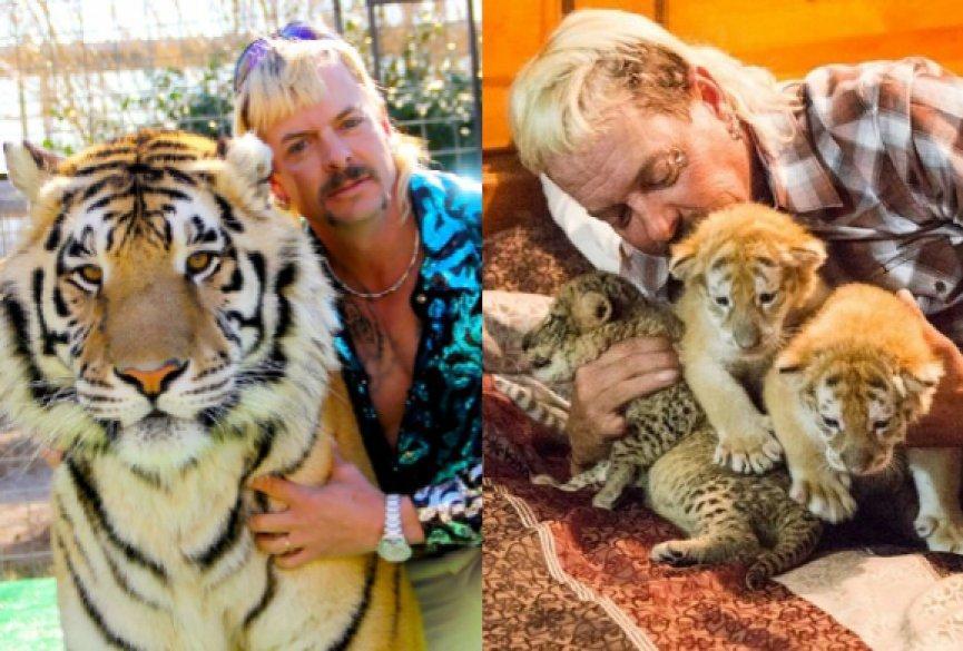 《养虎为患》揭露美国大猫买卖文化,人心比凶猛动物还可怕