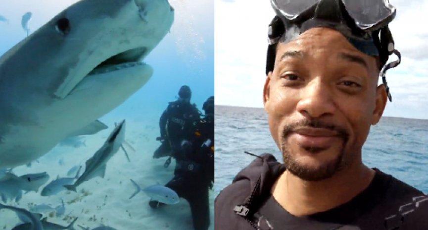 威尔史密斯自爆有恐海症!下水会鲨鱼狂口吃